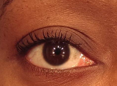 milani total lash cover eye