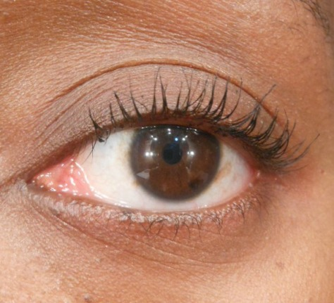 Lashes w/ Maybelline Illegal Length Mascara